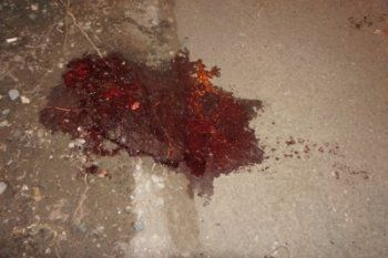 В Нижнем Тагиле лихач сбил мужчину на пешеходном переходе и скрылся с места ДТП