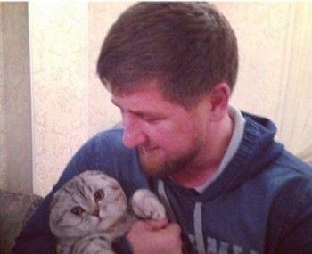 Кадыров призвал быть добрее на примере видео о слепом котёнке