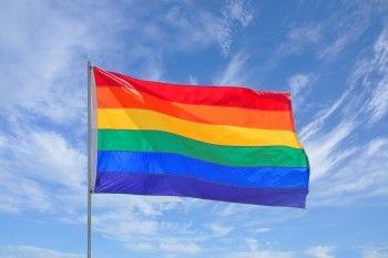 Мэр Архангельска пообещал провести гей-парад в День ВДВ