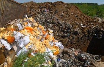 Против уничтожения продуктов подписались более 350 тысяч россиян