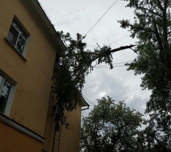 В Нижнем Тагиле шквалистый ветер повалил деревья на машины и устроил блэкаут на УВЗ