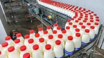 Новый приказ Минсельхоза РФ может разрушить рынок молока. «Работаем до первой проверки на свой страх и риск»