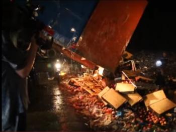 Россельхознадзор уничтожил 19 тонн персиков в Ленинградской области (ВИДЕО)