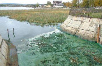 Медведев ответил на петицию тысяч тагильчан с просьбой спасти город от экологической катастрофы