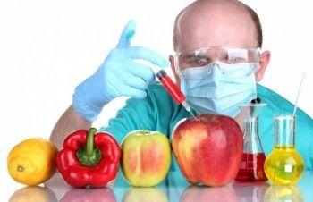 В России запретили ГМО