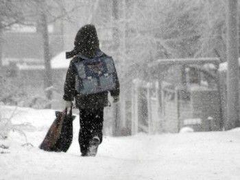 Тагильские школы могут уйти на внеплановые каникулы