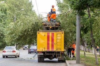 В пригороде Нижнего Тагила из-за упавшей ветки несколько улиц остались без электричества