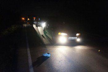 Водитель не заметил пешехода в темноте