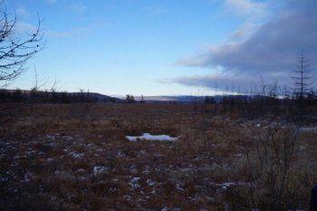 Жителей Свердловской области зовут на Колыму за бесплатным гектаром