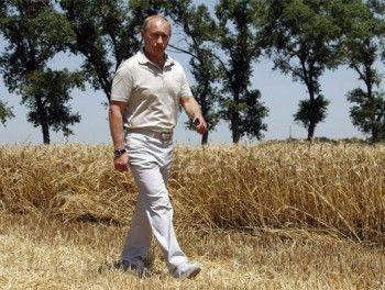 После отказа от дебатов кандидат Путин отказался от съёмок в агитационных роликах