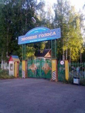 В детском оздоровительном лагере под Нижним Тагилом найден труп педагога