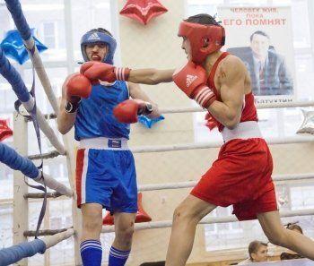 В Нижнем Тагиле отберут сильнейших боксёров в сборную Свердловской области