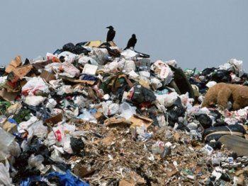 «Дебилы - это мы, тагильчане» или зачем городу «мусорный» проект Сергея Носова