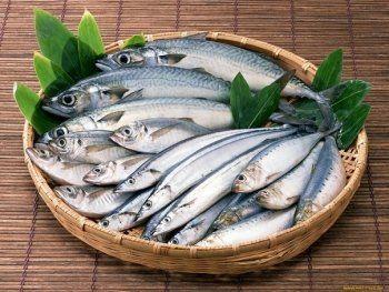 В Россию запретили ввозить рыбные продукты из Литвы