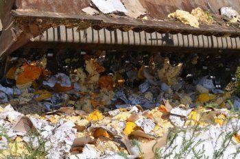 За первый день в России сожгли и закопали более 300 тонн санкционных продуктов