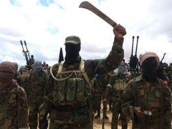 МВД подсчитало количество россиян в «Исламском государстве»