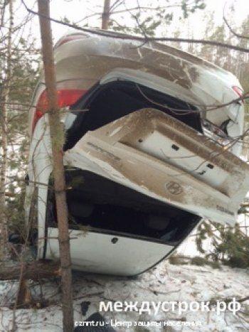 Под Нижним Тагилом автоледи вылетела с трассы на 50 метров и приземлилась на дерево (ФОТО)