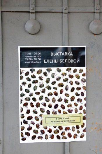 Выставка «Гербарий одинокой женщины» (ФОТО)