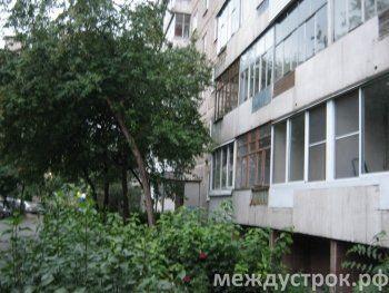 Эксперт из Екатеринбурга посчитает, сколько деревьев уничтожила попавшая на скамью подсудимых тагильчанка