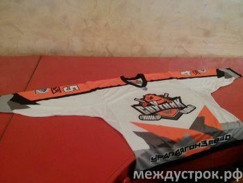 В Нижний Тагил приедут легенды советского и российского хоккея