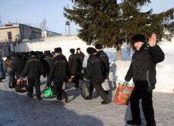Каждый второй «выпускник» тагильских тюрем вновь пускается во все тяжкие