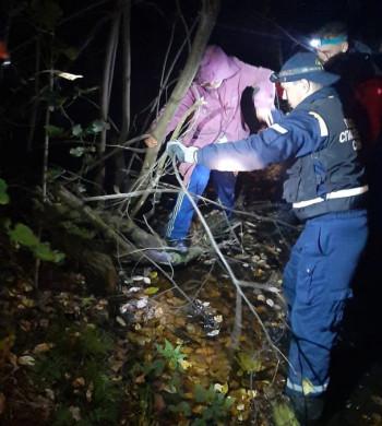 Спасатели вывели из болота заблудившуюся 80-летнюю жительницу Нижнего Тагила