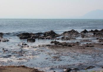 В Иркутской области прокуратура начала проверку информации о чёрной воде с неприятным запахом в Байкале (ВИДЕО)