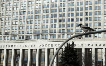Правительство РФ потратит почти 43 млн рублей для борьбы с воронами на крыше Белого дома