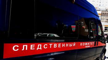 Житель Алтайского края осуждён заизнасилование трёх дочерей