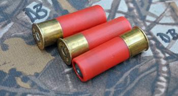 В Нижнем Тагиле пьяный мужчина получил огнестрельное ранение, поджигая патроны