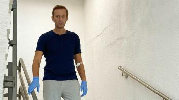 Сенаторы США предложили ввести санкции против российских чиновников из-за отравления Навального