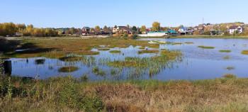 В Нижнем Тагиле полностью очистят шламонакопитель позеленевшего Черноисточинского пруда и восстановят земли под ним