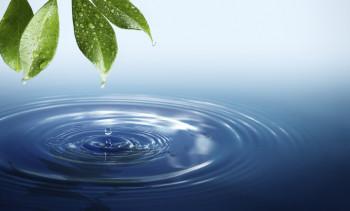 Музей-заповедник проведёт Всемирный день воды онлайн