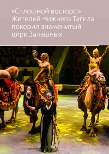 «Сплошной восторг!» Жителей Нижнего Тагила покорил знаменитый цирк Запашных