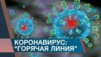 В Свердловской области появились дополнительные горячие линии по коронавирусу