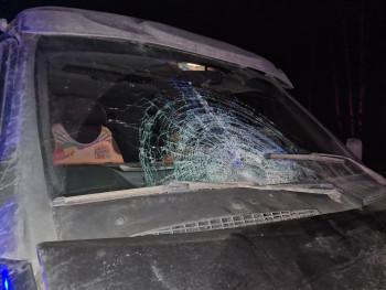 На трассе под Нижним Тагилом насмерть сбили пешехода