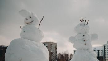 В Архангельской области к активистке пришла полиция из-за «митинга снеговиков»