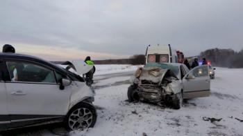 Под Екатеринбургом пенсионер устроил ДТП с двумя погибшими