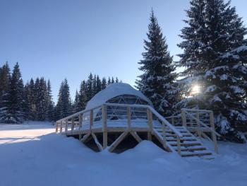 «Антиковидный» отдых в лесу с Wi-Fi и кондиционером: у подножия горы Белой появился первый на Урале купольный отель
