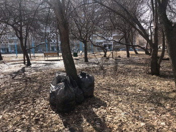 «Мерзко это было видеть каждый день». Жительница Нижнего Тагила самостоятельно прибрала от мусора два двора, не дожидаясь помощи коммунальщиков