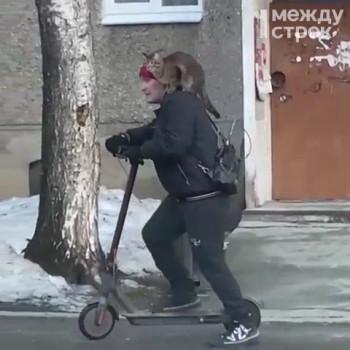 Тагильчанин на самокате с котом на плече попал на видео. Дадим 1000 рублей тому, кто поможет их найти