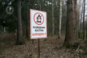 В 16 муниципалитетах Свердловской области запретили разжигать костры