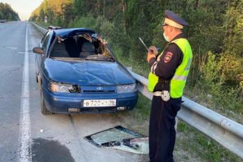 Под Екатеринбургом в ДТП с лосем пострадали 4 человека