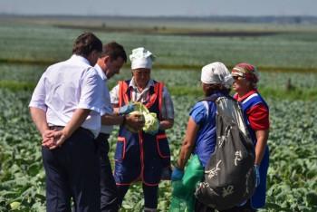 В Свердловской области из-за засухи объявлен режим ЧС