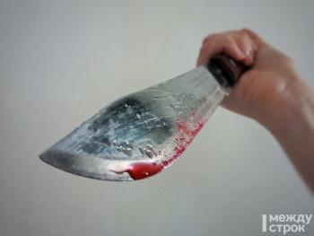 В Нижнем Тагиле женщина во время застолья убила своего собутыльника