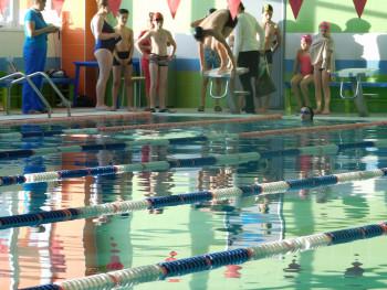 Не хватает тренеров, автобусов и денег. Чиновники и депутаты Нижнего Тагила разбираются, почему никак не получается вернуть школьникам уроки плавания