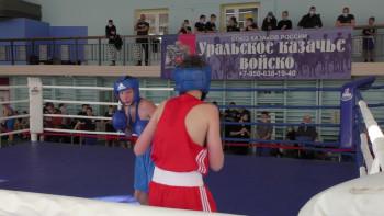 В Нижнем Тагиле стартовал чемпионат по боксу памяти Анатолия Соловьёва