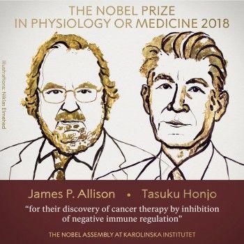 Объявлены лауреаты Нобелевской премии по медицине