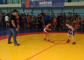 В Нижнем Тагиле прошёл областной турнир по греко-римской борьбе памяти погибших воинов-тагильчан