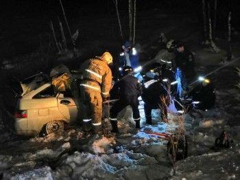 В ДТП с лесовозом под Нижним Тагилом погибла семья с двумя младенцами